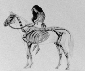 bones, woman, and hourse image