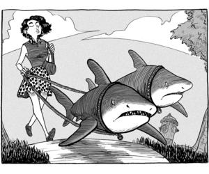 art, draw, and shark image