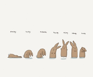 bunny, days, and rabbit image