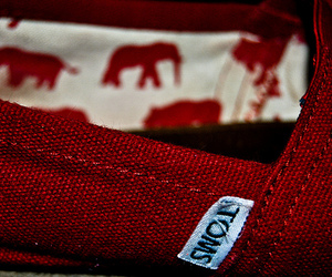 toms and red image