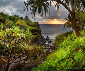 maui, hawai'i, and island morning image