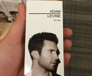 handsome, maroon 5, and parfume image