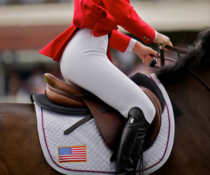 horse, beautiful, and boots image