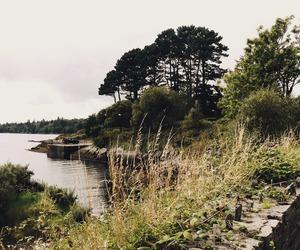landscape, beautiful, and ireland image