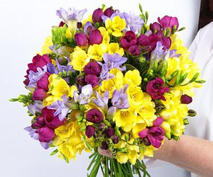 beutiful, colour, and flowers image