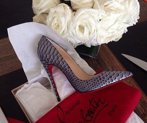pumps and christian louboutin image