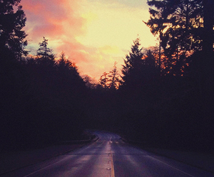 sunset, road, and forest image