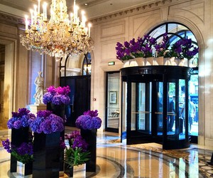 flowers, luxury, and chandelier image