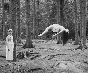 forest and witch image