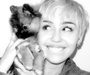 icon, icons, and miley cyrus image