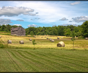 farm, hay, and hdr image