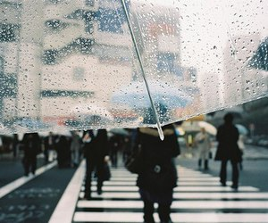 rain, umbrella, and street image