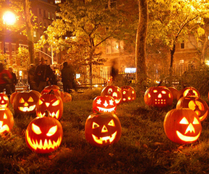 Halloween, new york, and pumpkin image