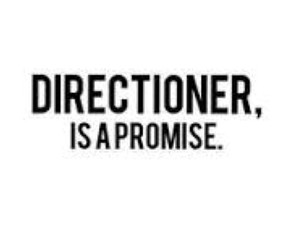 one direction, directioner, and promise image