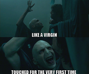 harry potter, voldemort, and like a virgin image