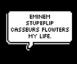 eminem, life, and stupeflip image