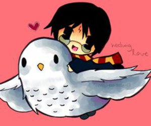 hedwig, harry, and harry potter image