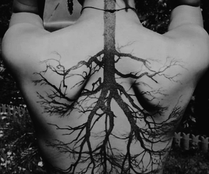 black and white, tattoo, and tree image