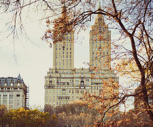 autumn, city, and nature image