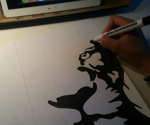 draw, drawing, and lion image