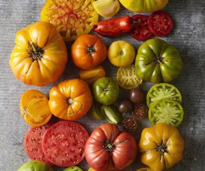 August, fall, and heirloom image