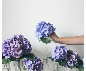 beauty, flowers, and love it image
