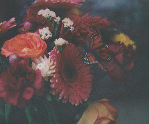 flowers, vintage, and butterfly image