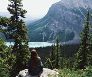 nature, girl, and forest image