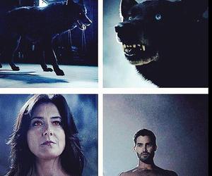 teen wolf, derek hale, and wolf image