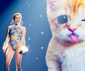 miley cyrus, miley, and cat image