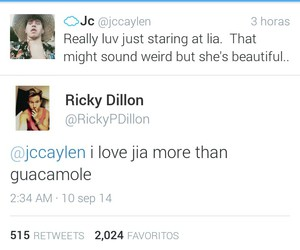 youtubers, jia, and ricky dillon image