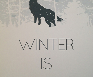 winter, game of thrones, and got image