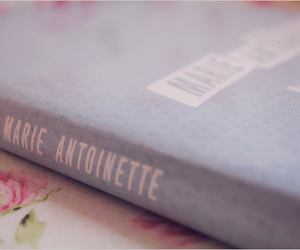 book and marie antoinette image