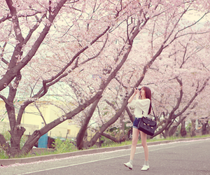 ulzzang, korean, and flowers image