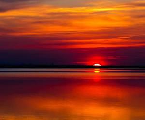 sunset, nature, and beach image