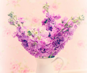 flowers, floral, and flower crown image