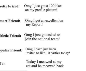 funny, friends, and cat image