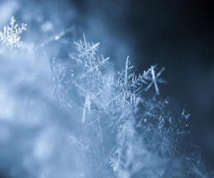 ice, inverno, and neve image