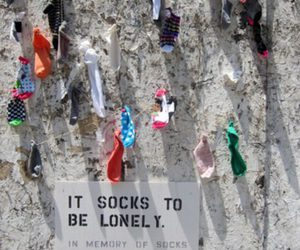 socks, lonely, and funny image