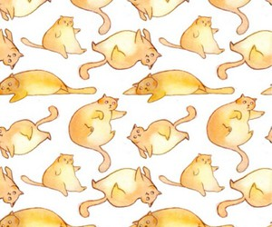cats, wallpapers, and backgrounds image