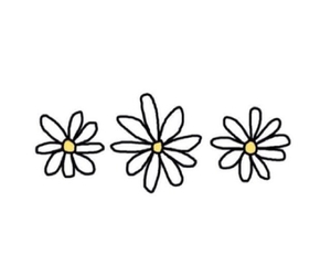 overlay, flowers, and daisy image