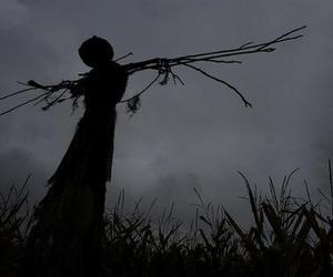 scarecrow, eerie, and Halloween image