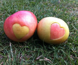 :), apples, and grass image