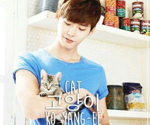 lee jong suk, cat, and actor image