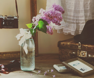 flowers, lilacs, and room image