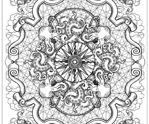 black and white, compass, and octopus image