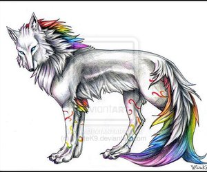 drawing, rainbow, and wolf image