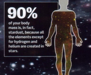 stars, stardust, and fact image
