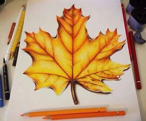 colors, cool., and draw image