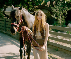 horse, Devon Aoki, and model image